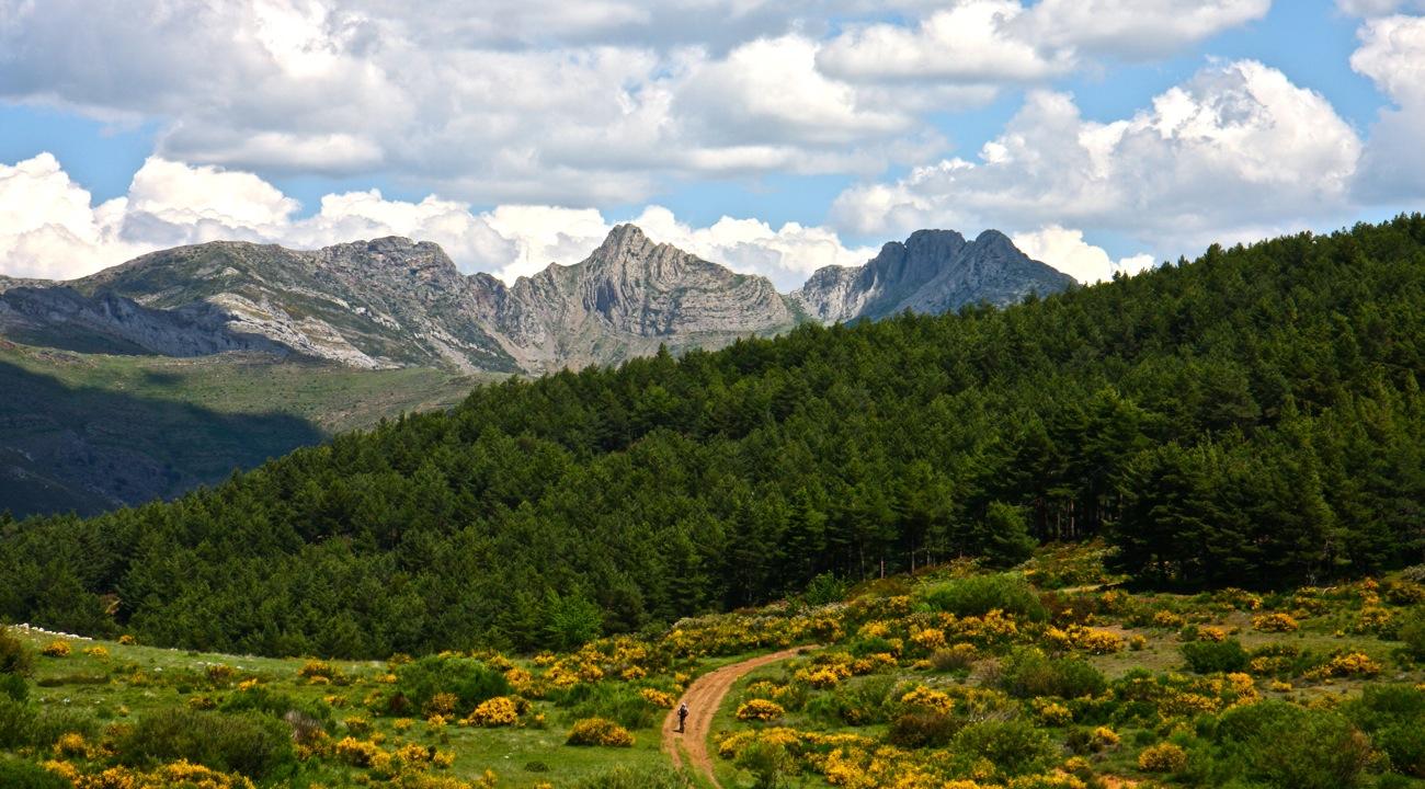 Pedales de León - Picos de Europa I CONUNPARDERUEDAS.com